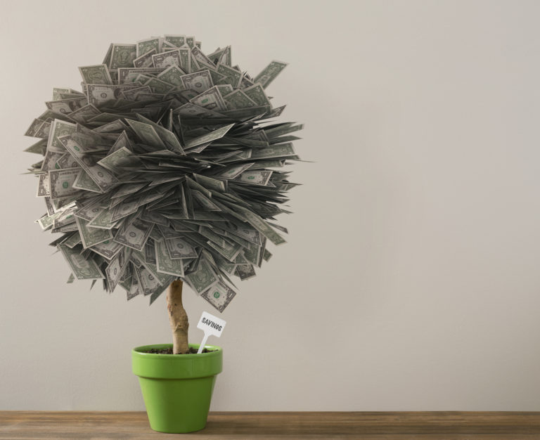 Money tree and savings