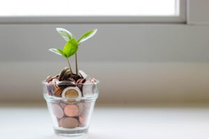 A small plant coming out of a jar of coins